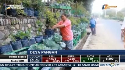 Warga Desa Ini Penuhi Kebutuhan Pangan Tanpa Membeli