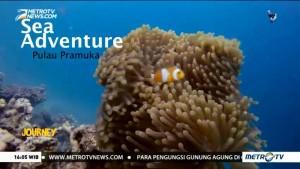 Sea Adventure Pulau Pramuka (1)