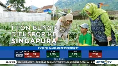 Petani Muda di Lembang Ekspor Sayuran ke Asia Tenggara