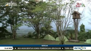 Wisata Kaki Gunung Pangrango