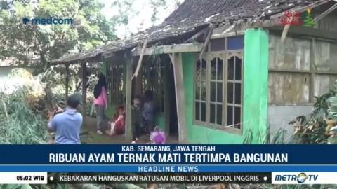 Pascaputing Beliung, Warga Semarang Gotong Royong Benahi Rumah yang Rusak