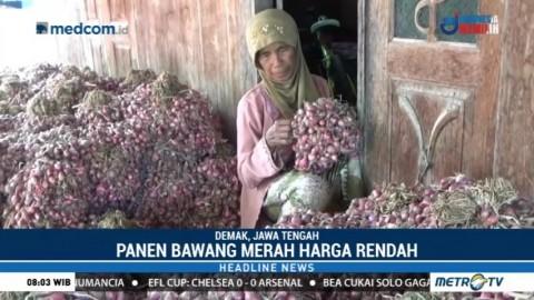 Bupati Demak Wajibkan PNS Beli Bawang Merah dari Petani