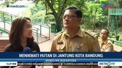 Menikmati Hutan di Jantung Kota Bandung