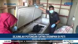 Polres Sijunjung Bongkar Perdagangan Daging Satwa Langka