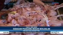 Harga Ayam Potong di Sejumlah Daerah Naik