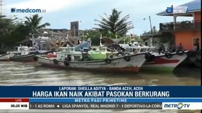 Nelayan Enggan Melaut, Harga Ikan di Aceh Barat Naik
