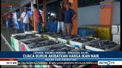 Cuaca Buruk, Harga Berbagai Jenis Ikan di Makassar Naik