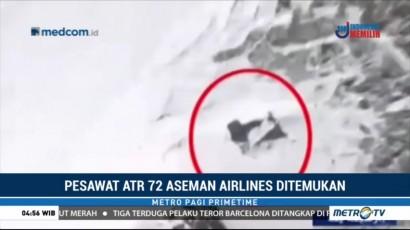 Pesawat yang Jatuh di Pegunungan Iran Ditemukan