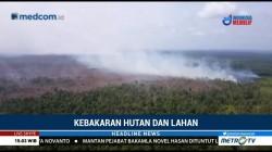 BMKG Deteksi Tiga Titik Api Muncul di Provinsi Riau