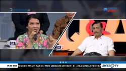 Luhut Jawab Kritik Melanie Subono soal Reklamasi Jakarta