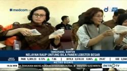 Bea Cukai Gagalkan Penyelundupan 1,8 Juta Benih Lobster