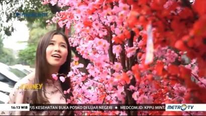 Journey: Jakarta China Town (2)