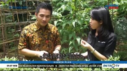 Mengenal Ekosistem Pertanian Organik (1)