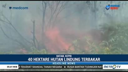 40 Hektare Hutan Lindung di Batam Terbakar