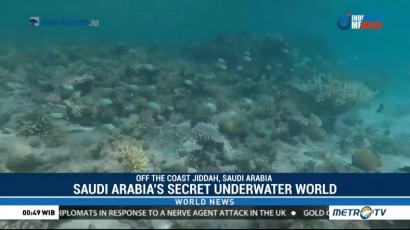 Saudi Arabia's Secret Underwater World