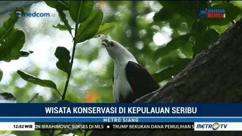Wisata Konservasi di Kepulauan Seribu