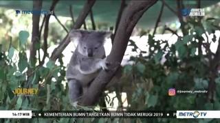 Journey to Queensland Australia (2)