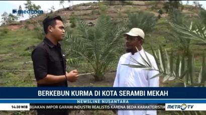 Tanaman Kurma Tumbuh Subur di Aceh