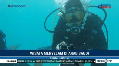 Wisata Menyelam di Laut Merah