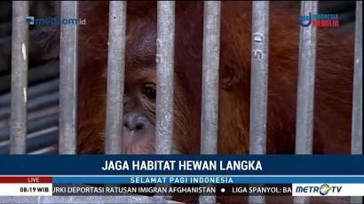 Jaga Habitat Hewan Langka (2)