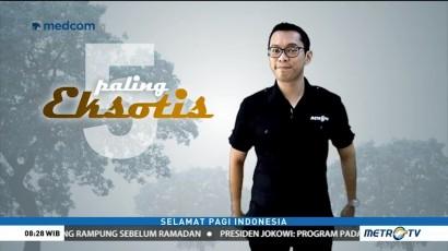 Lima Taman Nasional Paling Eksotis di Indonesia