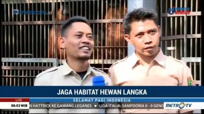 Jaga Habitat Hewan Langka (4)