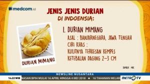 Jenis-jenis Durian di Indonesia