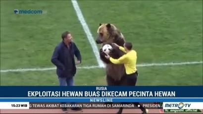 Atraksi Beruang Buka Pertandingan Liga Rusia