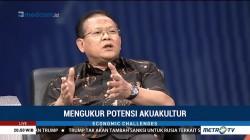 MAI: Lewat Budidaya Udang Perekonomian Indonesia Berpotensi Naik 10%