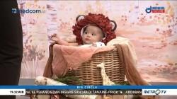 Bisnis Sehat Untuk Bayi Sehat (3)