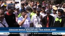 Ribuan Warga Way Kanan Tolak Eksekusi Lahan Sawit