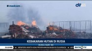 Kebakaran Hutan Hanguskan 90 Ribu Hektare Lahan di Rusia