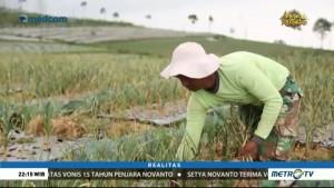 Tergadai Impor Bawang Putih (2)