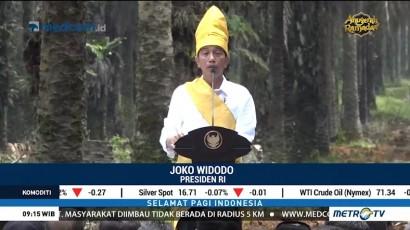 Jokowi: Peremajaan Kelapa Sawit di Indonesia Terlambat