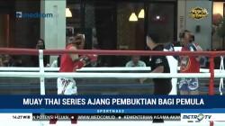 Muay Thai Series Ajang Pembuktian Bagi Pemula