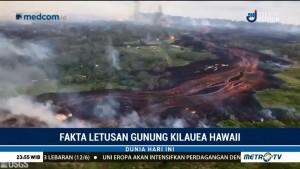 Fakta Letusan Gunung Kilauea