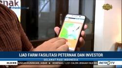 Aplikasi Ijad Farm Hubungkan Peternak dengan Investor