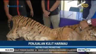 Polres Musi Rawas Gagalkan Penjualan Kulit Harimau Sumatera