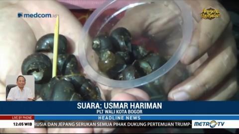 Puluhan Warga Keracunan Tutut, Bogor Tetapkan Status KLB