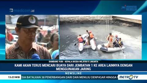 Pasang Surut Air Jadi Kendala Penangkapan Buaya di Kali Grogol