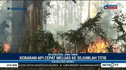 Belasan Hektare Hutan Jati di Bojonegoro Ludes Terbakar
