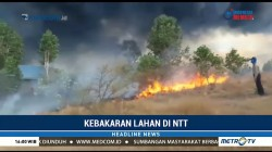 Polres Lembata Pantau Titik-Titik Rawan Kebakaran Hutan