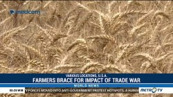 Farmers Brace for Impact of Trade War