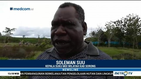 Kepala Suku Moi Minta Pemerintah Cabut Izin Penangkaran Buaya