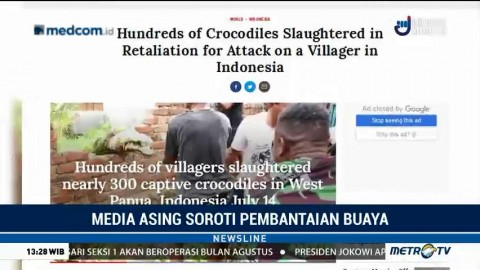 Media Asing Soroti Pembantaian Buaya di Sorong