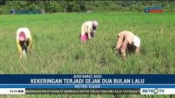 Aceh Dilanda Kekeringan