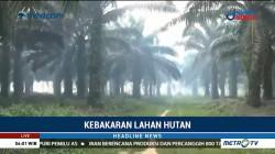 Lima Titik Api Terdeteksi di Ogan Komering Ilir