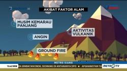 Fakta Kebakaran Lahan dan Hutan