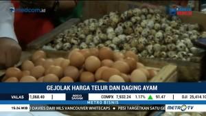 Gejolak Harga Telur dan Daging Ayam