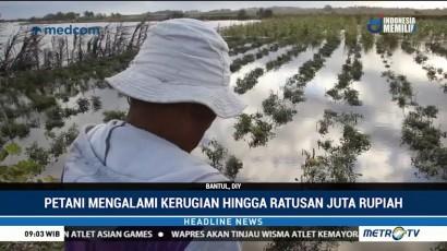 Puluhan Hektare Tanaman Bawang di Bantul Terendam Banjir Rob